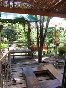 泉州:泉佐野の雑木林