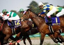 【競馬よ今宵も有難う】馬、牧場、富士山の写真と生活を懸けた競馬予想!-ノリは絶望・・・