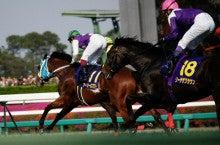 【競馬よ今宵も有難う】馬、牧場、富士山の写真と生活を懸けた競馬予想!-武豊の嫌な予感・・・