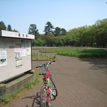 小金井公園へ