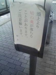 味スタに行きたい!-20090420120918.jpg