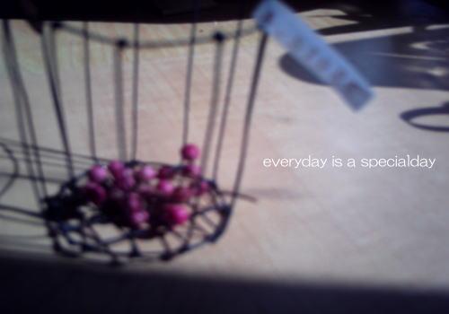 毎日がスペシャル♪-05