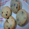 Muffin☆の画像