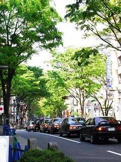 新谷良子オフィシャルblog 「はぴすま☆だいありー♪」 Powered by Ameba-新緑。