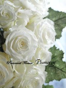 Plumerry(プルメリー)プリザーブドフラワースクール (千葉・浦安校)-プリザーブドフラワー 白キャスケード