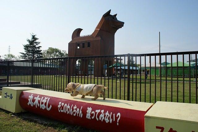 旅犬Lanileaのほほん風船記-つくばわんわんランド ドッグラン