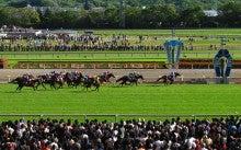 【競馬よ今宵も有難う】馬、牧場、富士山の写真と生活を懸けた競馬予想!-ディアジーナ@フローラS