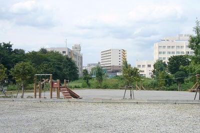 七里・大和田 地域探訪ブログ-七里総合公園_遊具