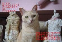 8.9.10…シビル&dodici&Treize-百箇日