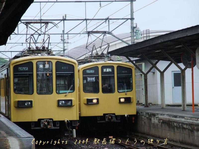 駅長猫コトラの独り言~旧 片上鉄道 吉ヶ原駅勤務~-ちょうど電車が来たで