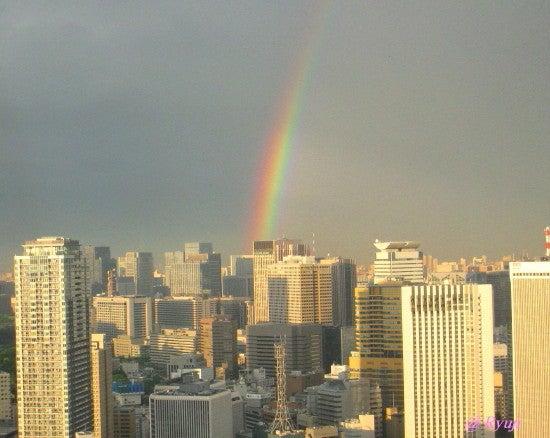 ∞最前線 通信-rainbow