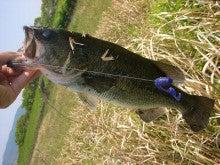 大好きな釣りをライフワークにしよう!!(^^