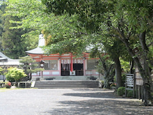 ラビングアースDragon Anasta-sakunado1