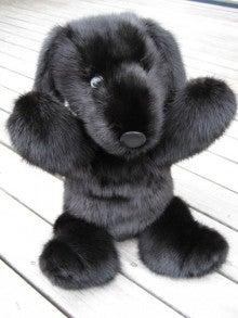 大木毛皮店ギタバカ工場長の毛皮修理リフォーム専門ブログ-毛皮コート ぬいぐるみにリフォーム