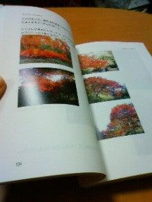 キウイジュース-200905162206000.jpg