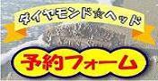 浜茶屋とBAR  ダイヤモンドヘッドのスタッフブログ-DH 予約フォーム