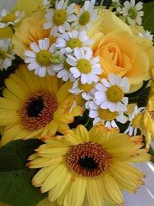 ジュエリー工房フィーゴのブログ-090520_164458.jpg