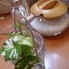 カフェ セレーネの画像