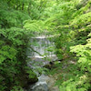 笹谷峠の流れる小川の画像