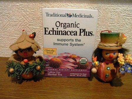 cinnamon log-Echinacea Plus