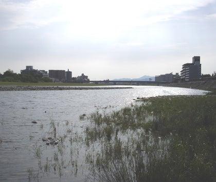 Shimizu 輪工房のブログ-愛知・岐阜の旅 ~長良川~4