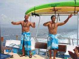 ホリデイアロハ ハワイ スタッフのブログ-dolphin09