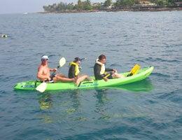 ホリデイアロハ ハワイ スタッフのブログ-dolphin07