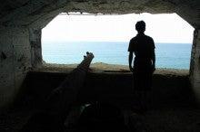 小笠原父島エコツアー情報    エコツーリズムの島        小笠原の旅情報と父島の自然-5.31