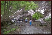 ロフトで綴る山と山スキー-林道歩き