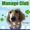 「Munage Club」ご入会♪の画像
