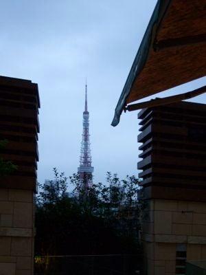 金活で金運アップ●満月お財布「フリフリーゼ」のブログ-東京タワー