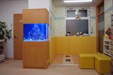 アクアガジュカンパニー~インテリア水槽・フルサポートメンテナンス