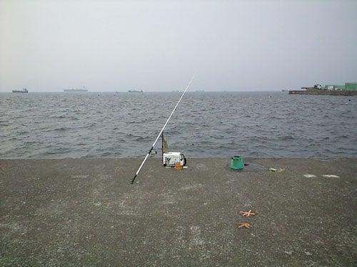 外道大王の釣行記-釣り日和の富岡新堤