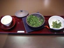 ビビのブログ-お茶