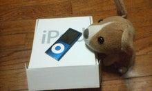 yohkoの405日-ipod