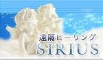 天然石ショップ∞Miyabiのスピリチュアルダイアリー∞動物と犬-Healing SIRIUS