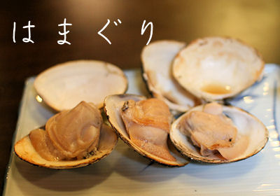 teacupプードルPOOHちゃんの日記②