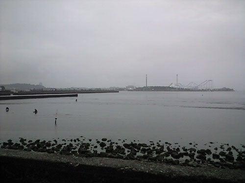 外道大王の釣行記-公園の干潟(左側)