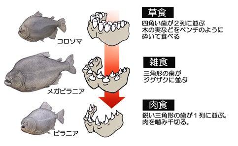 川崎悟司 オフィシャルブログ 古世界の住人 Powered by Ameba-草食から肉食へ