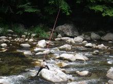 ビビのブログ-アユ釣り名人