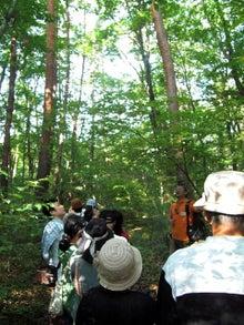 おかずブログ-森の朝のんびり散歩に参加