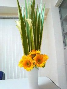 四元的身辺雑記-今週のお花