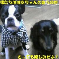 心愛 響のブログ