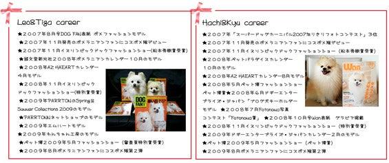 ☆Dress up Pome☆-career3