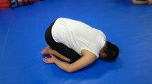 寝技打撃師のブログ