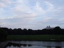 *となりのこころ*-夕方の公園