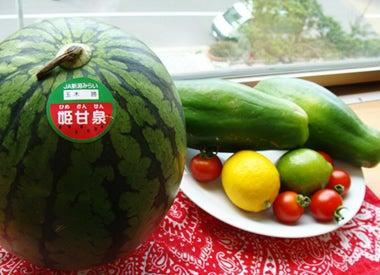 新潟ベジフルクラブ 【野菜ソムリエコミュニティ】