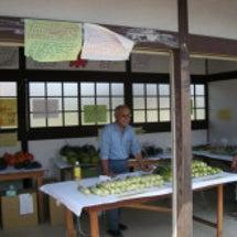 無農薬野菜を販売中で…