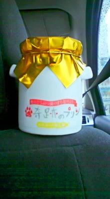 獣医学部生活24時-20090719161136.jpg