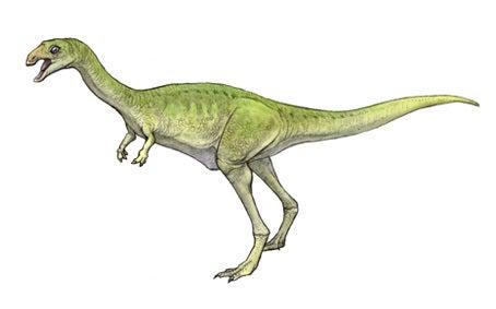 川崎悟司 オフィシャルブログ 古世界の住人 Powered by Ameba-リムサウルス